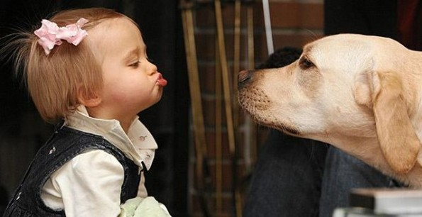 Baby-and-Dog-595x306